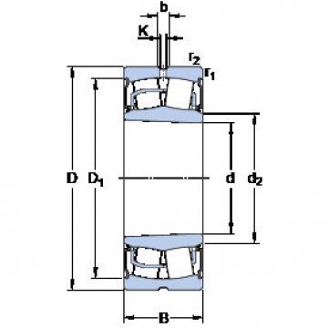 Bantalan BS2-2210-2RSK/VT143 SKF
